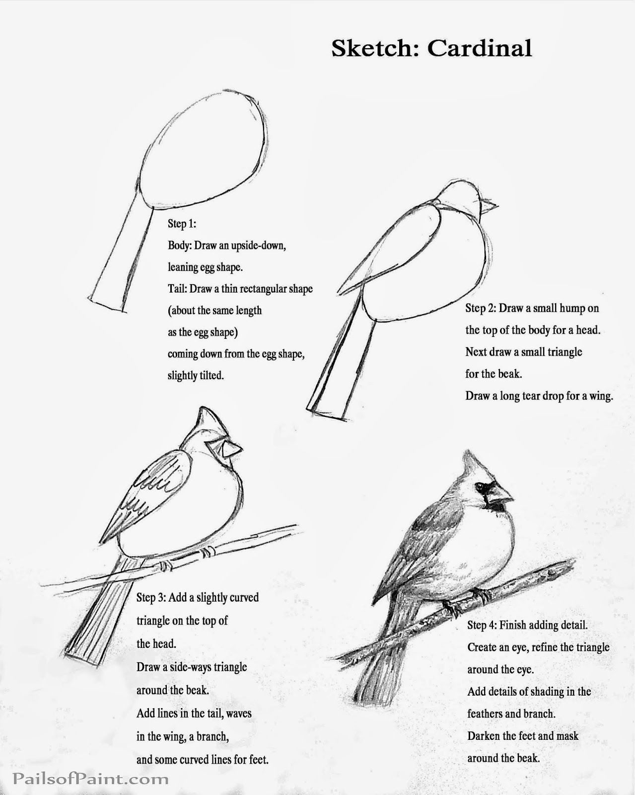 Pails Of Paint Art Lesson Sketch Page Of A Cardinal