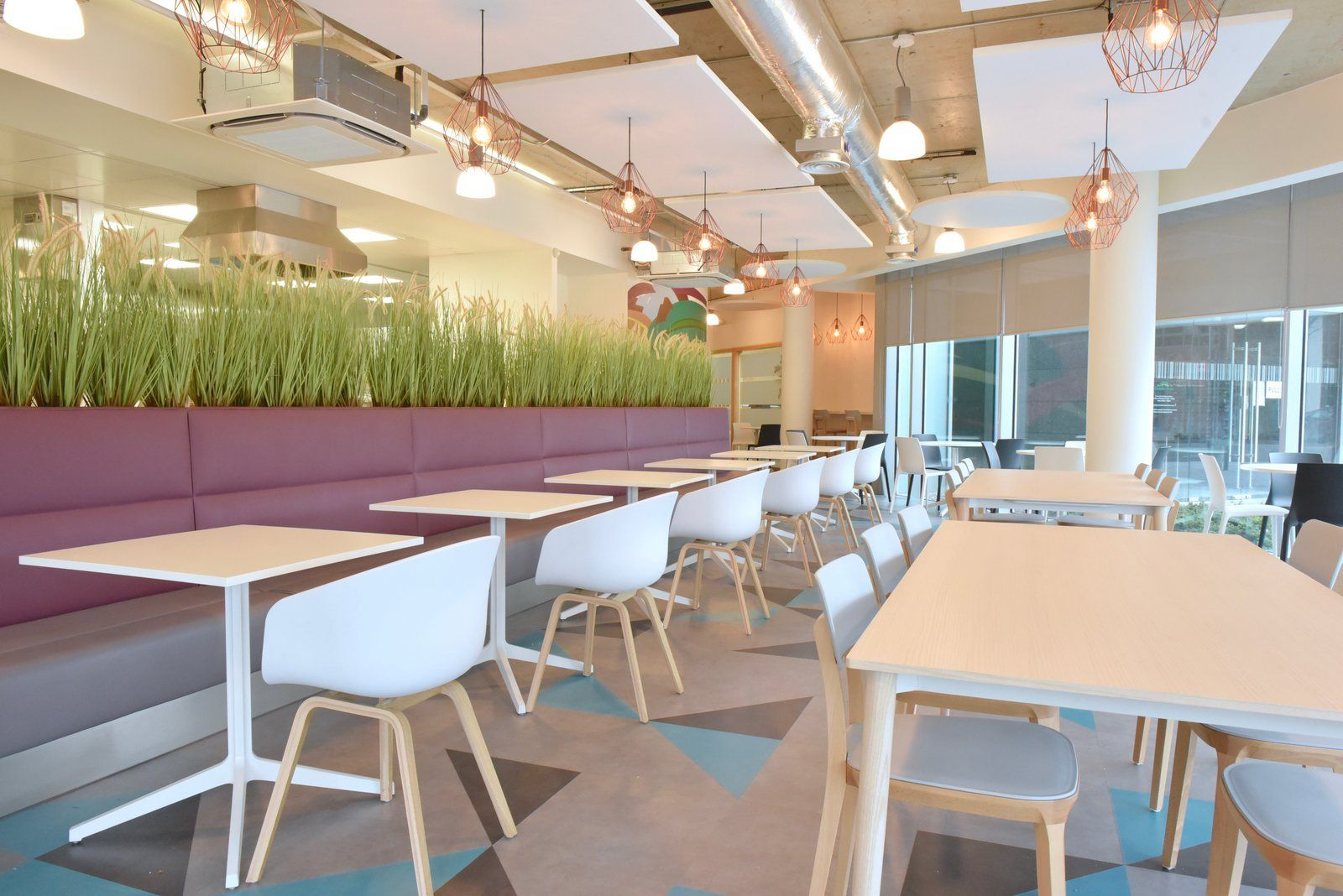 Office Tour Cartrawler Office Canteen Dublin With Images