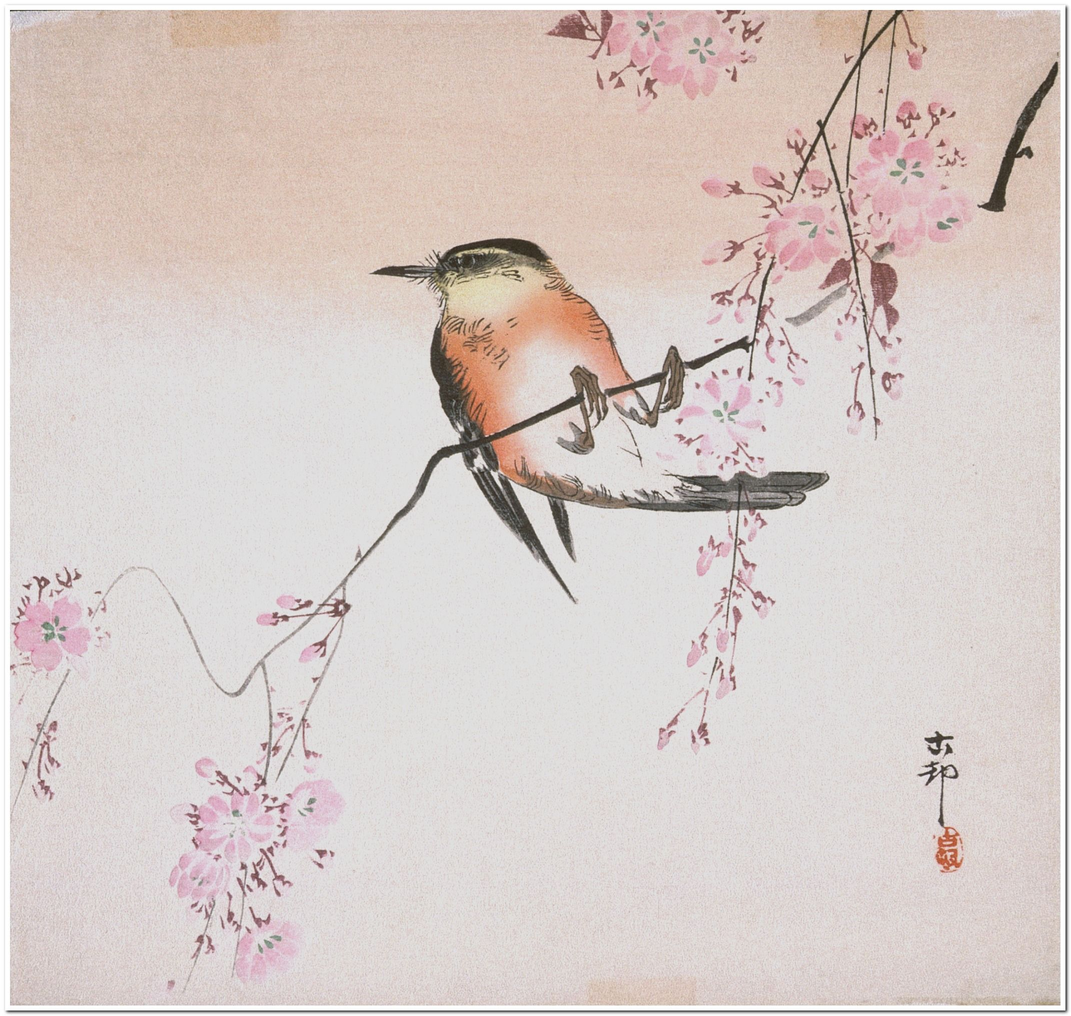Bird on Weeping Cherry Ohara Shōson (Koson) (Japan, 1877-1945) Japan, early 20th century Prints; woodcuts Color woodblock print