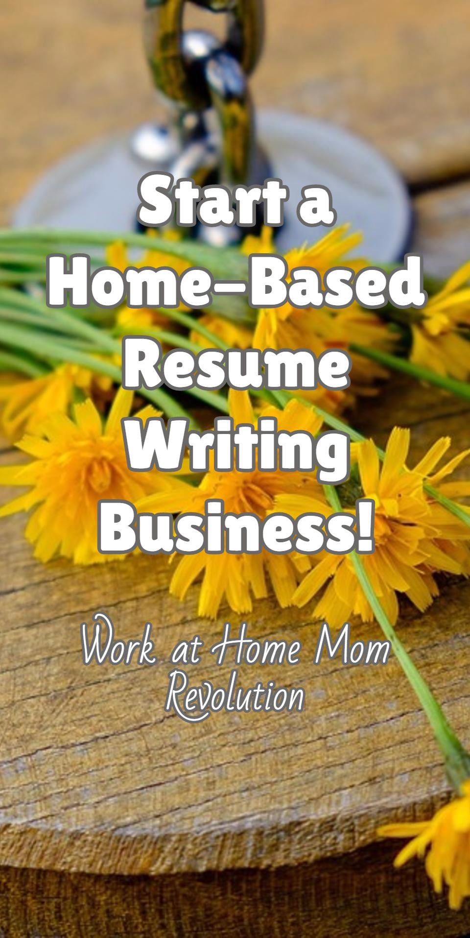 resume writing group reviews enchanting workathome start a resume writing home business business
