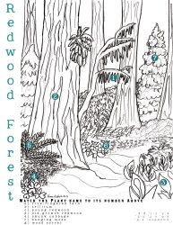 Redwood Forest Coloring Page With Plant Finding Activity