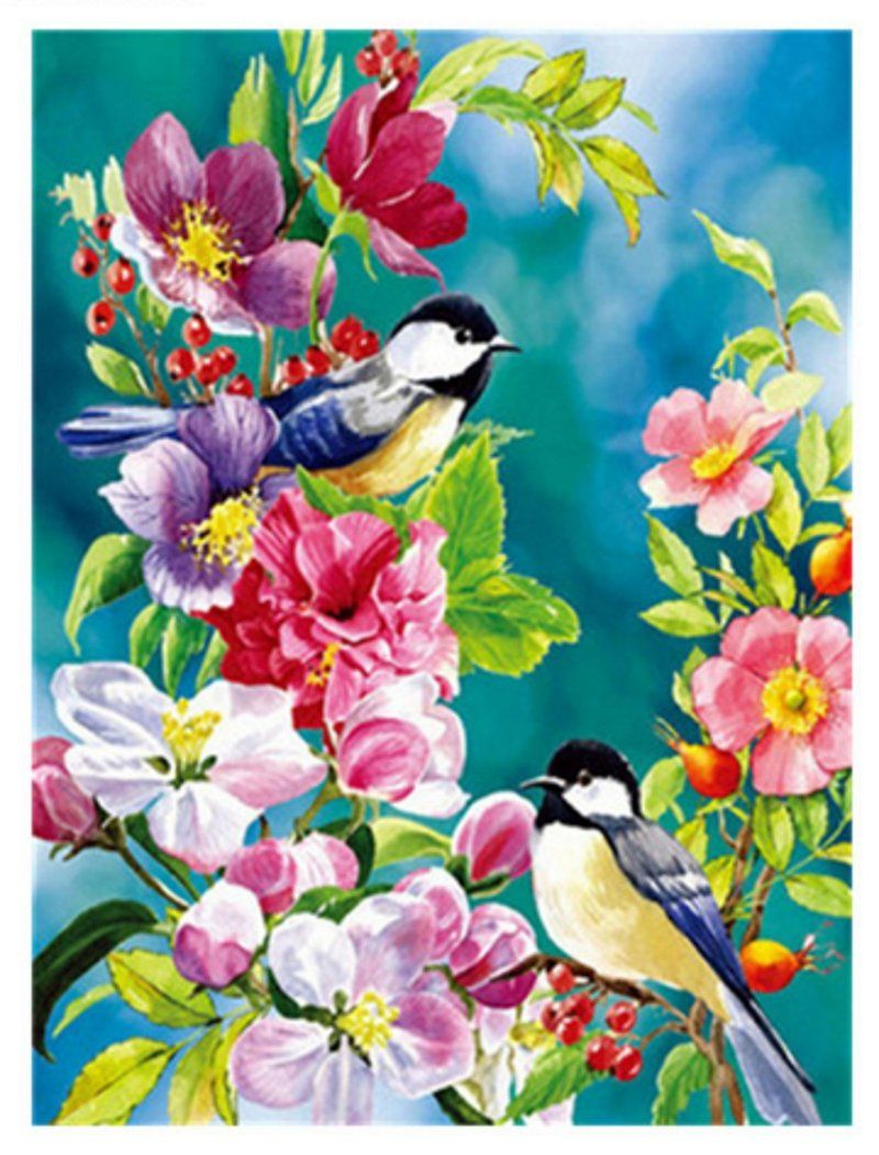 2 Birds And House Paint By Numbers Kits DIY Number Canvas Painting Hand Painted