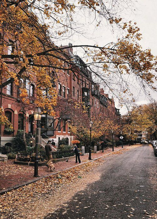 Brimmer Street In Autumn  Greeting Card for Sale by Brian McWilliams