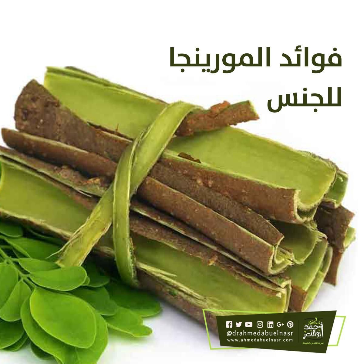 أروع فوائد بذور المورينجا للجنس فوائد شجرة المورينجا Green Beans Food Vegetables