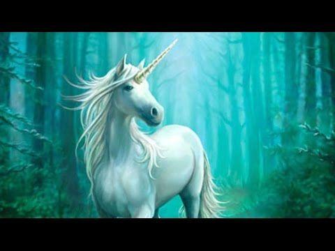 "Meet ""unicorn cow god"" Legendary"