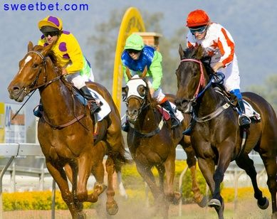 Free Horse Racing Games Play Free Horse Racing Games At Sweet Bet Horses Free Horses Horse Racing