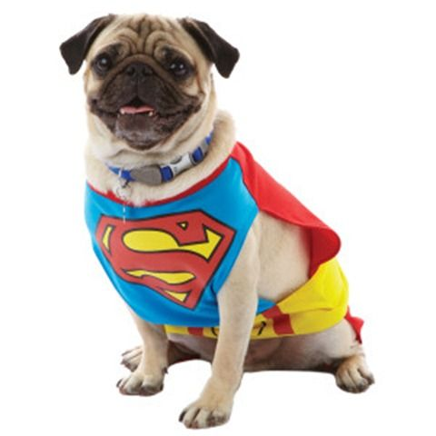 Superman Dog Costume Dog Halloween Costumes Dog Halloween