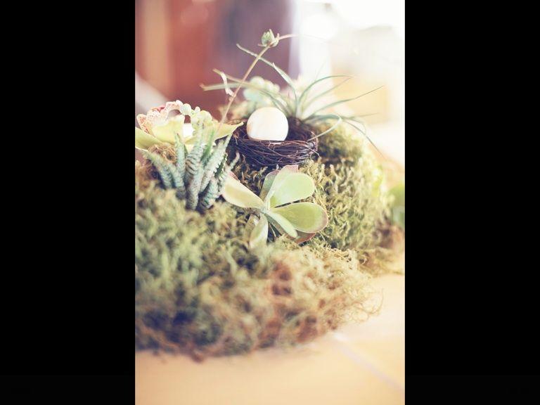 Mossy centerpiece