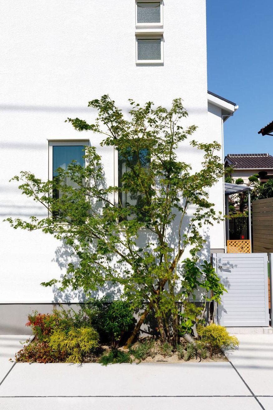ボード ガーデン 花壇 植栽 のピン