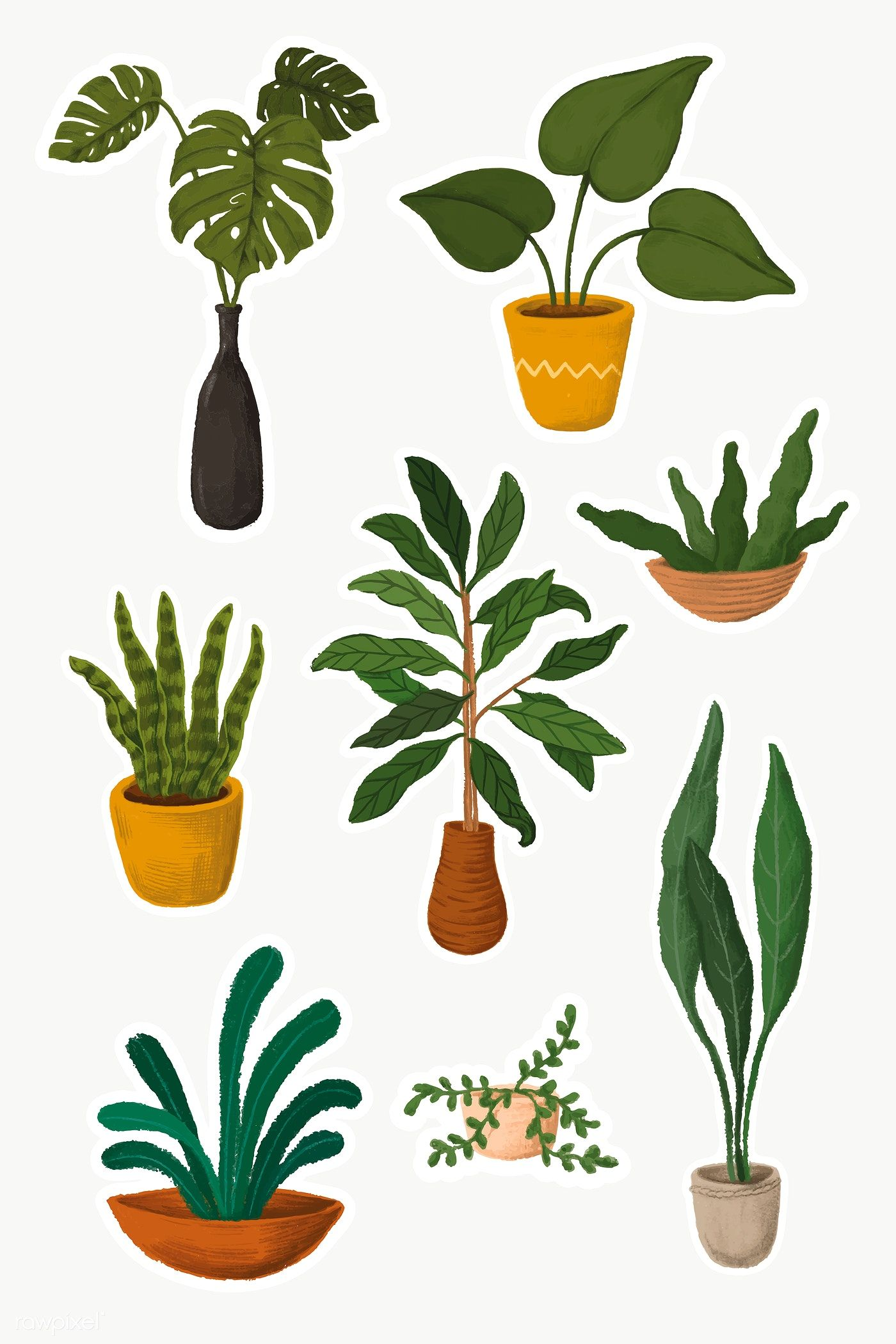 Indoor Plants Sticker Collection Premium Image By Rawpixel Com Noon Plant Drawing Plants Plant Illustration