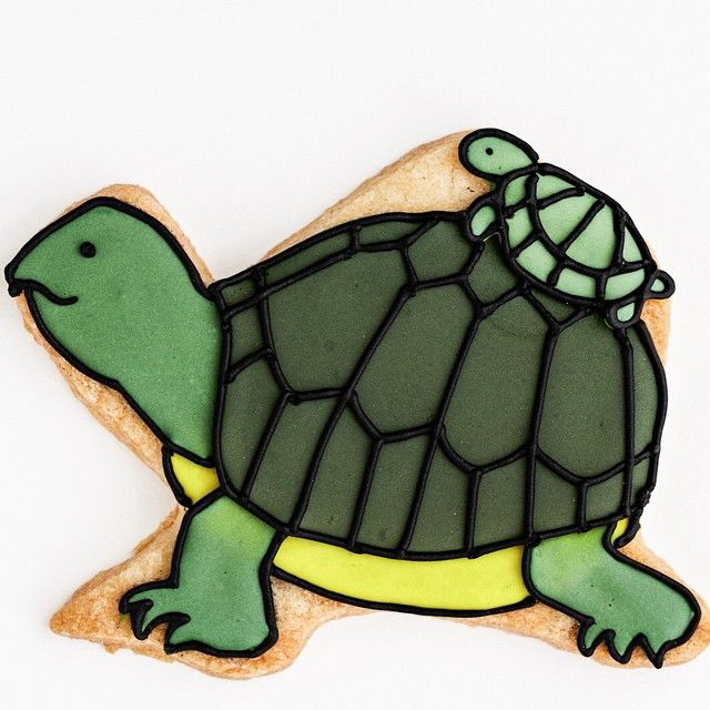Turtle cookie // Baked ideas