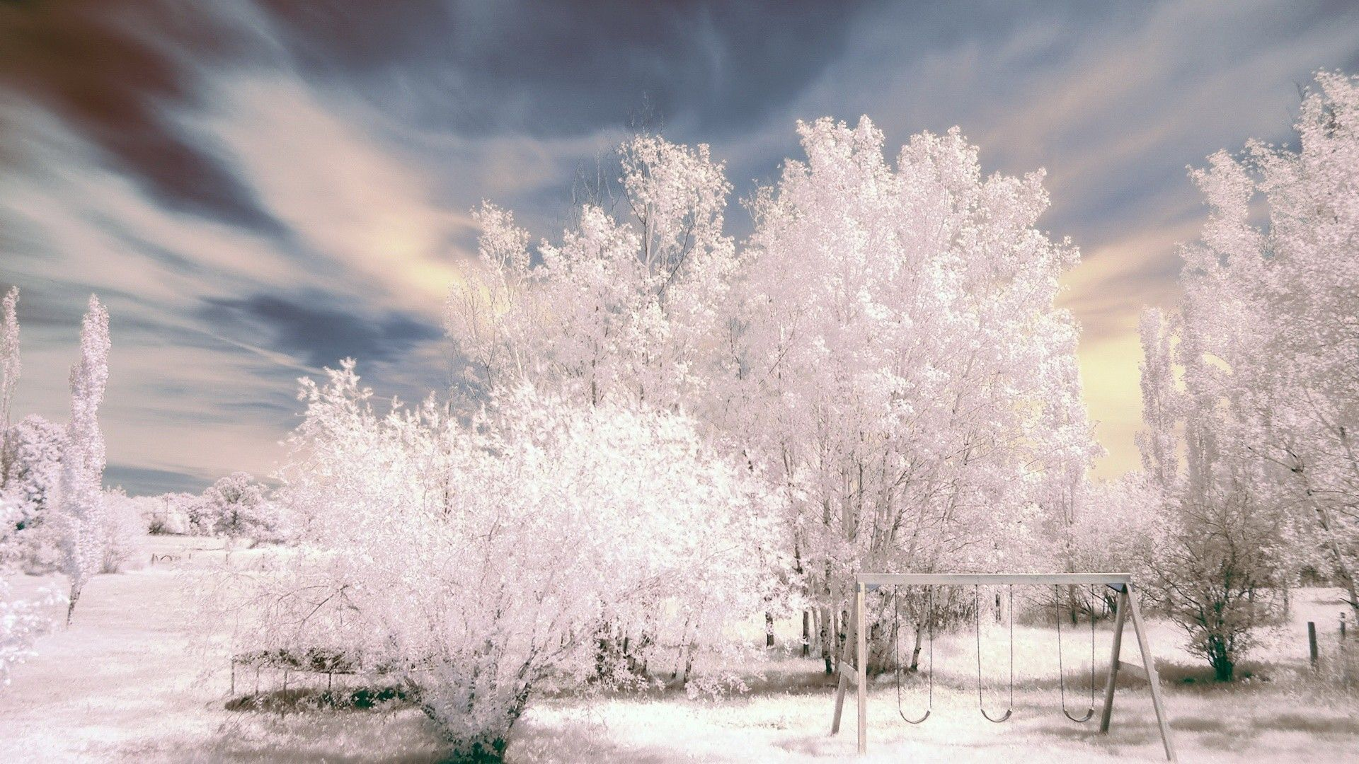 Landscapes Nature Winter Season Trees HDR Photography 1920x1080 Wallpaper