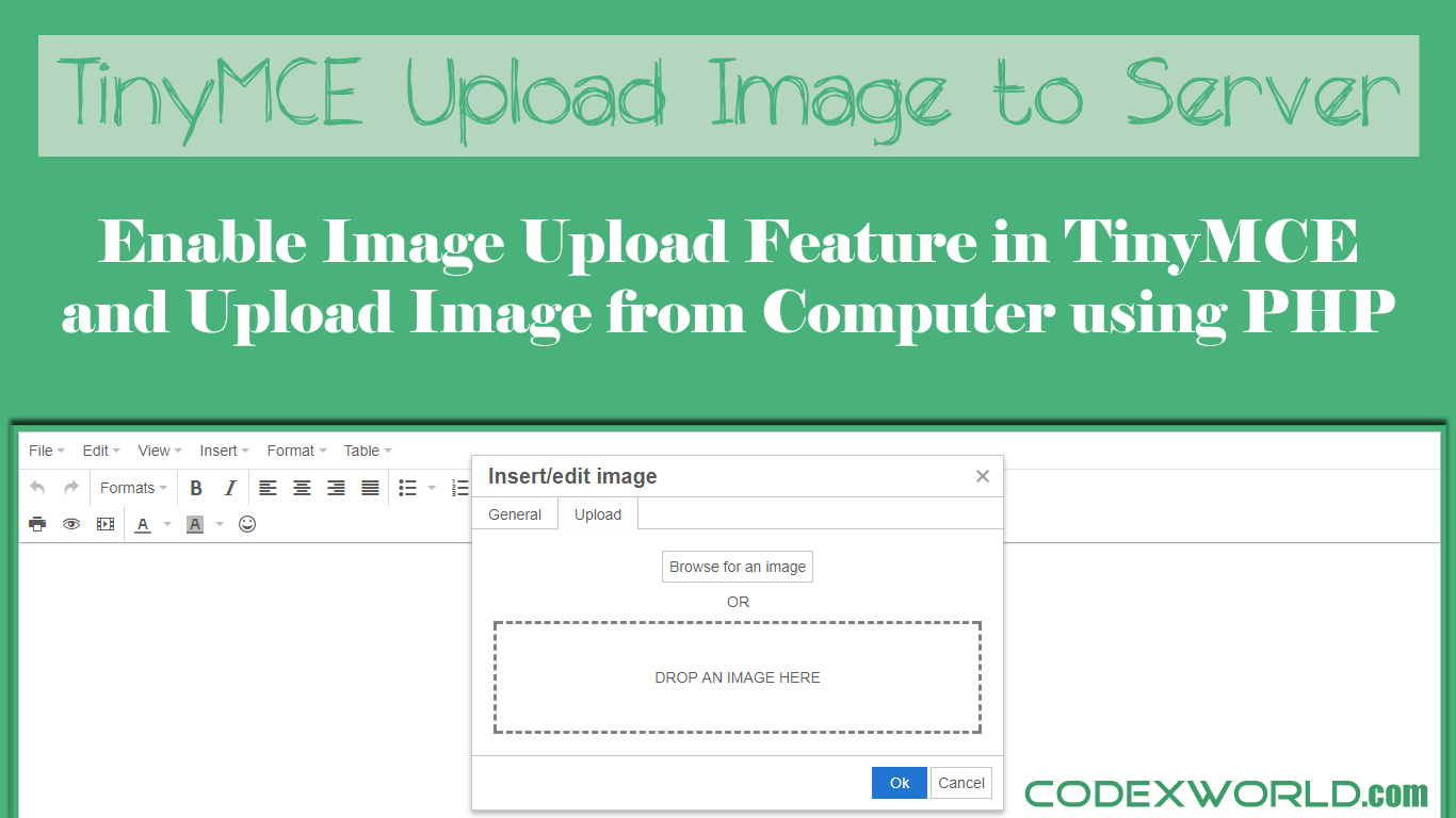How To Upload Image In Tinymce Editor Using Php Codexworld Web Development Tutorial Php Tutorial Upload Image