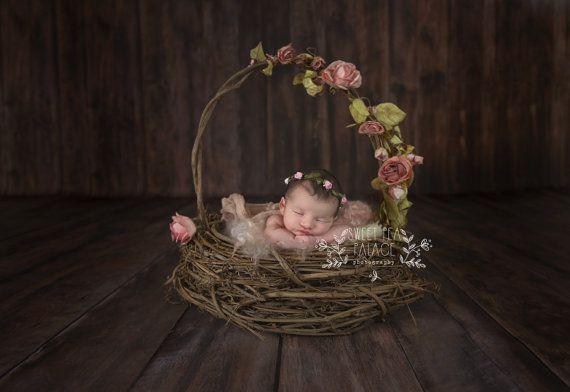 Baby Toddler Child Photography Prop Digital Backdrop for Photographers Rose Basket