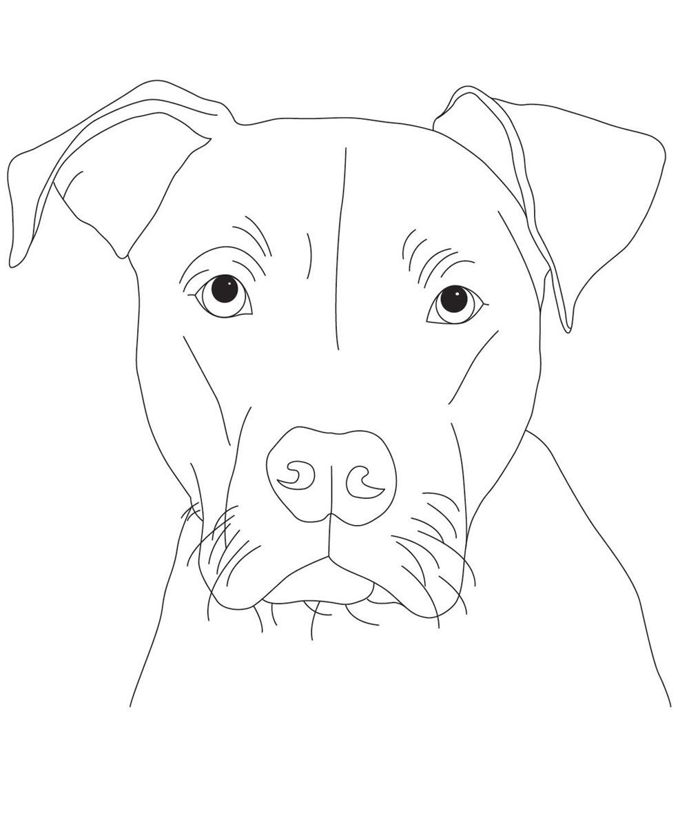 Pitbull Coloring Pages For Kids Educative Printable Dog