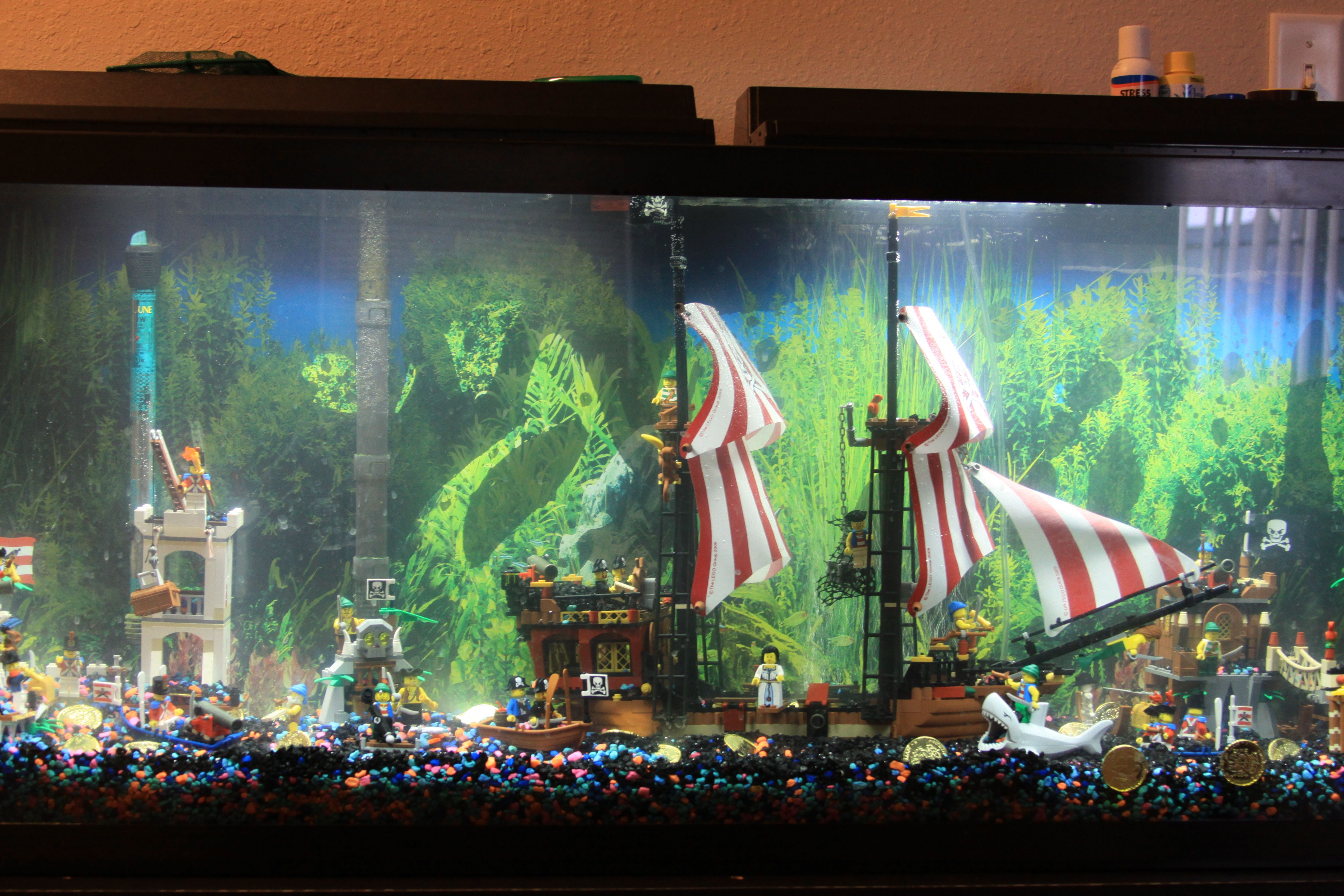 What my son wants is a fish tank with a filter in the back and legos