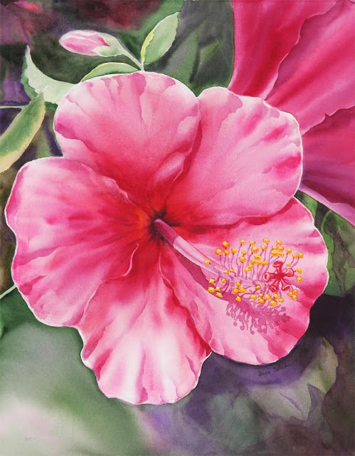 Watercolor Hibiscus With Images Flower Painting Canvas Flower
