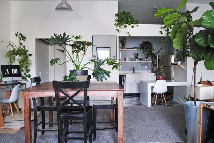 This Salt Lake City Studio Is Full Of Plants And Polaroids With Images Salt Lake City Downtown Studio City Loft Apartment