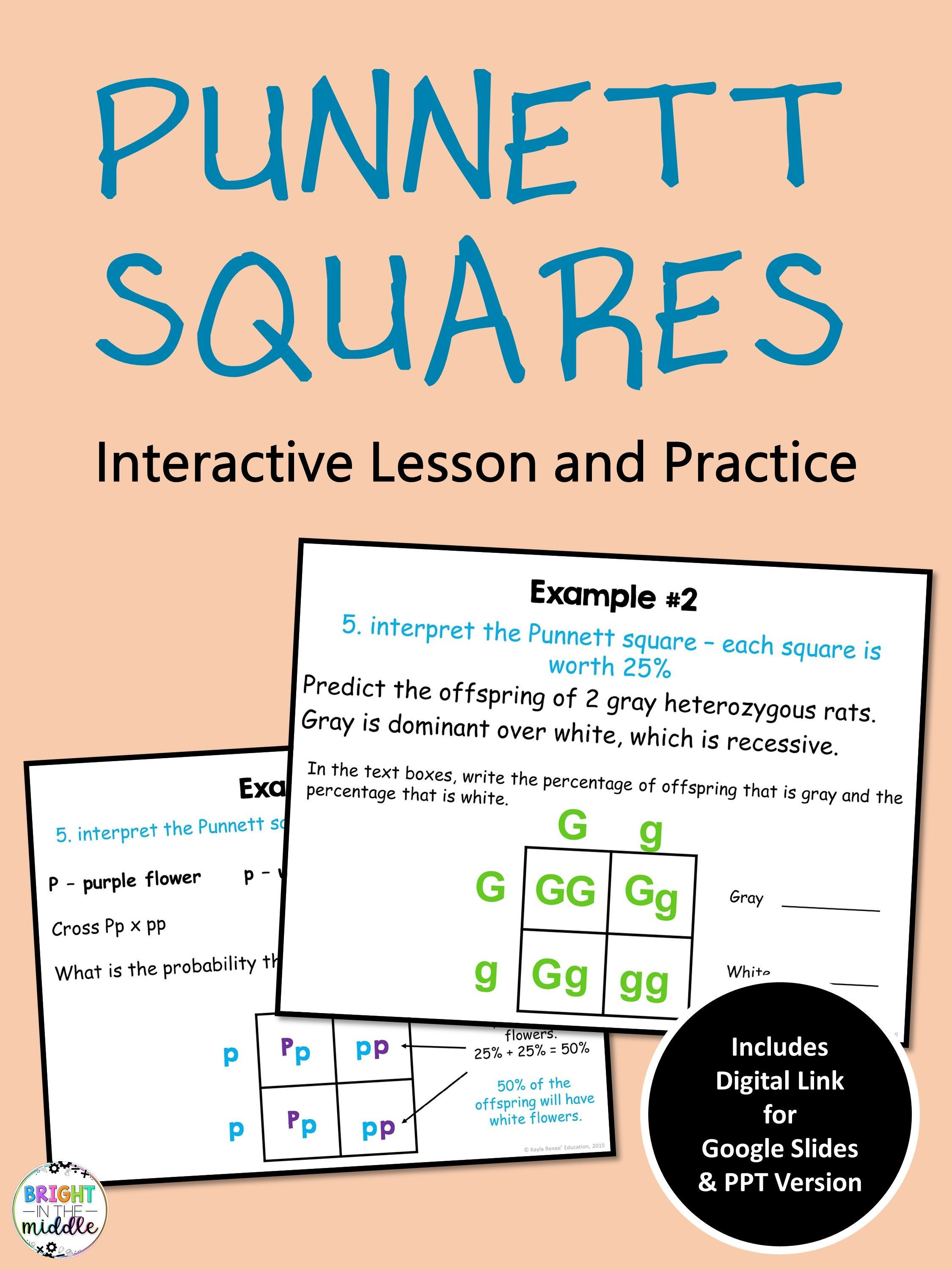 Punnett Squares Digital Interactive Lesson In 2020 Interactive Lessons Middle School Science Resources Genetics Lesson