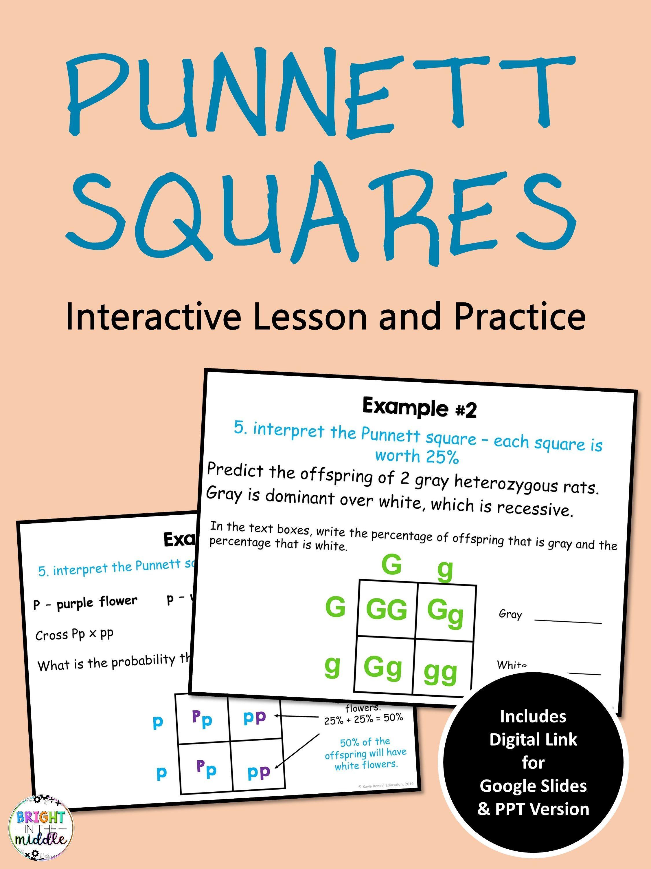 Punnett Squares Digital Interactive Lesson In