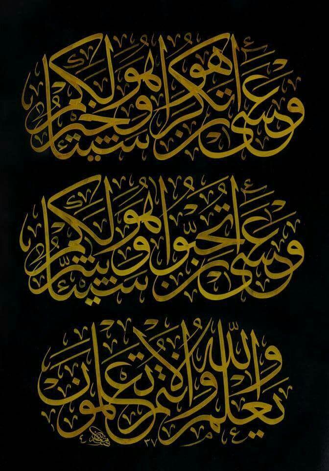 وعسى ان تكرهوا شيئا وهو خير لكم وعسى ان تحبوا شيئا وهو شر لكم والله يعلم وانتم لا تعلم Islamic Calligraphy Painting Islamic Art Calligraphy Islamic Calligraphy