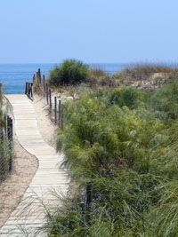 Islantilla And La Antilla By All About Spain All About Spain Spain Country Roads
