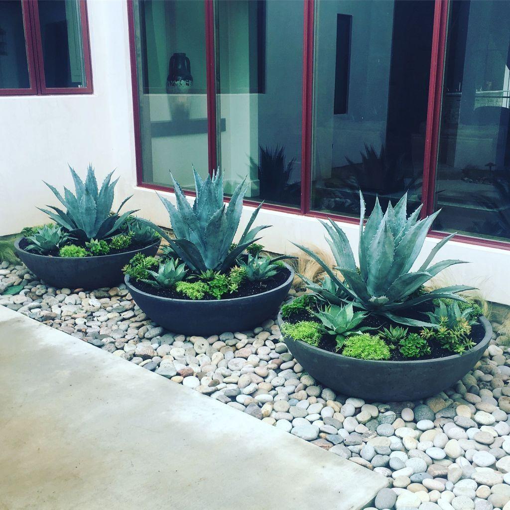 simple beautiful front yard