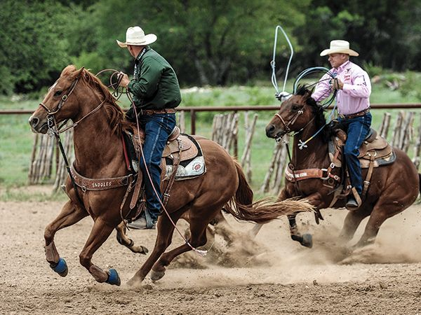 When to Face and When Not to Face in the Practice Pen with ...