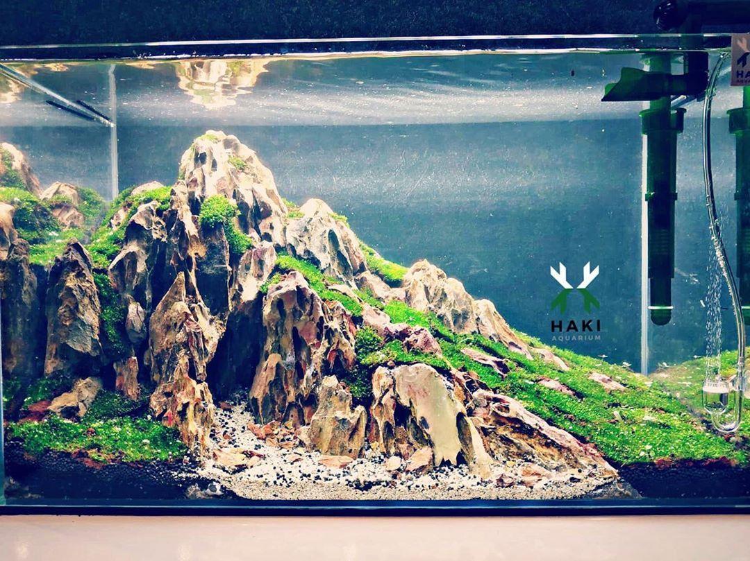 Minimalist Mountain Aquascape Tank Aquascape Design Aquascape Aquascape Aquarium