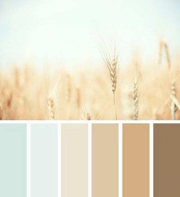 Ideal combinations of colors for interior (5)