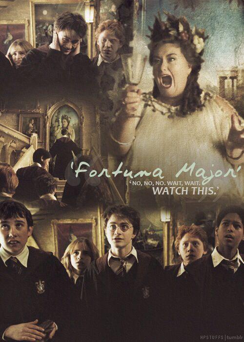 Die Fette Dame Harry Potter Asthetik Harry Potter Bilder Bilder