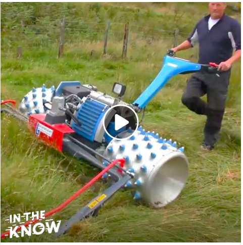 Things To Know About Reel Lawn Mowers Reel Lawn Mower Lawn Mowers Lawn