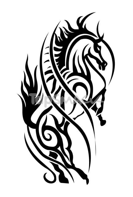 Tribal Horse Tattoo Sample Tat Animals Pinterest Tattoos