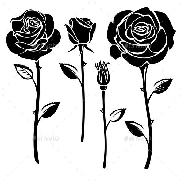 Roses Vector Eps Ai Illustrator Cs Beauty Black And White Blossom Bud Collection Flo Black Rose Tattoos White Rose Tattoos Black And White Rose Tattoo