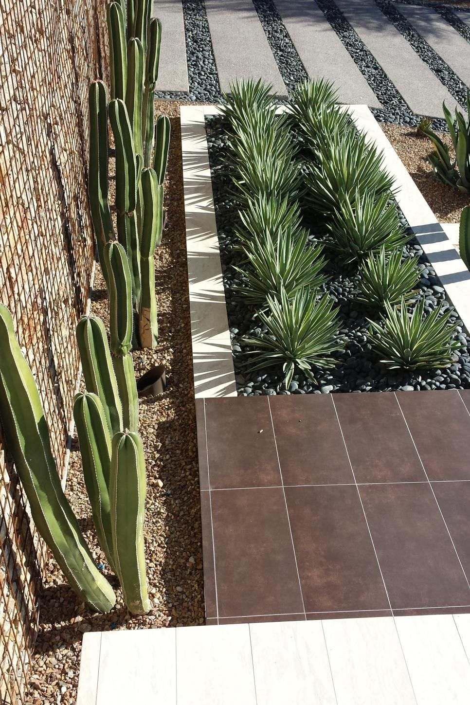eco-friendly front-yard landscaping | yucca plant, gabion wall and
