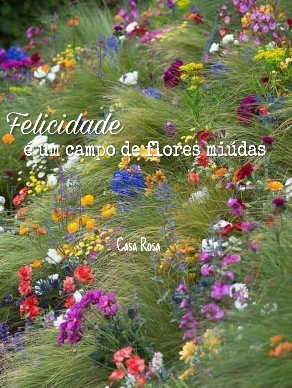 Pin De Casa Rosa Em Frases Campo De Flores Rosas Flores
