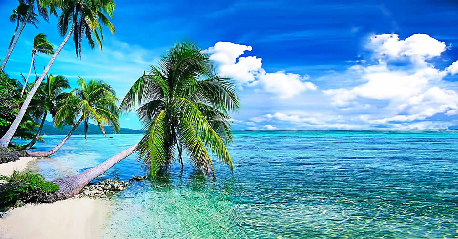 Live Wallpapers For Pc Hd 64 Wallpapers Hd Wallpapers Beach Wallpaper Nature Wallpaper Wallpaper Pc