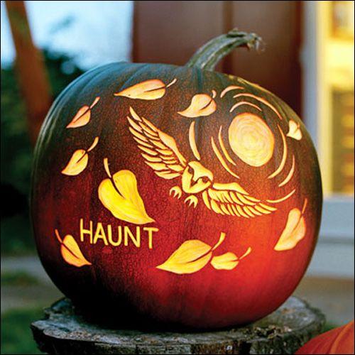 Free Halloween Pumpkin Carving Owl Templates   Pumpkin carvings, Owl ...