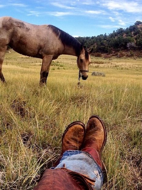 100 tumblr atmosphere west pinterest horse for Ranch and rural living