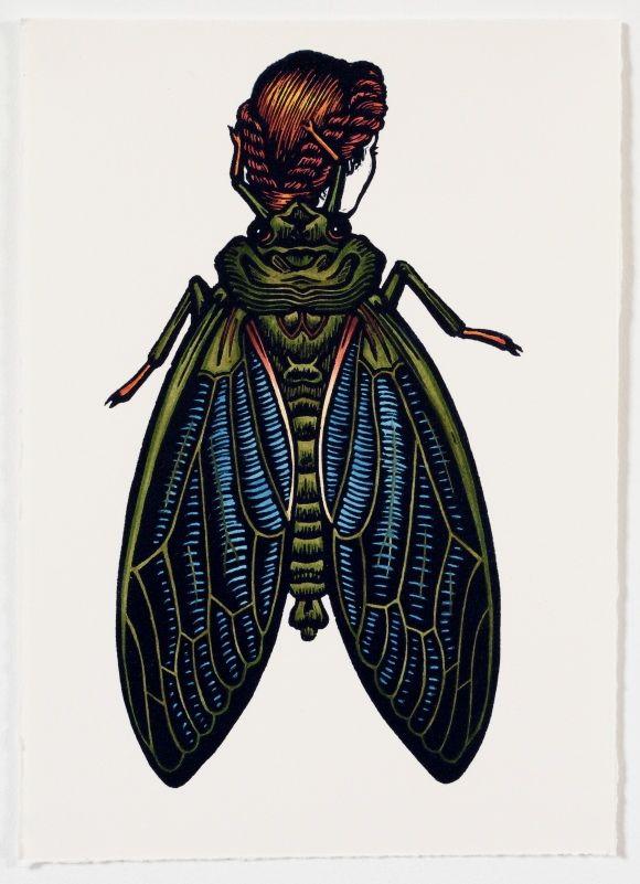 Emergent-Cicada-Woman-2013-linocut-hand-coloured-22-x-18.5-cm.jpg (580×801)