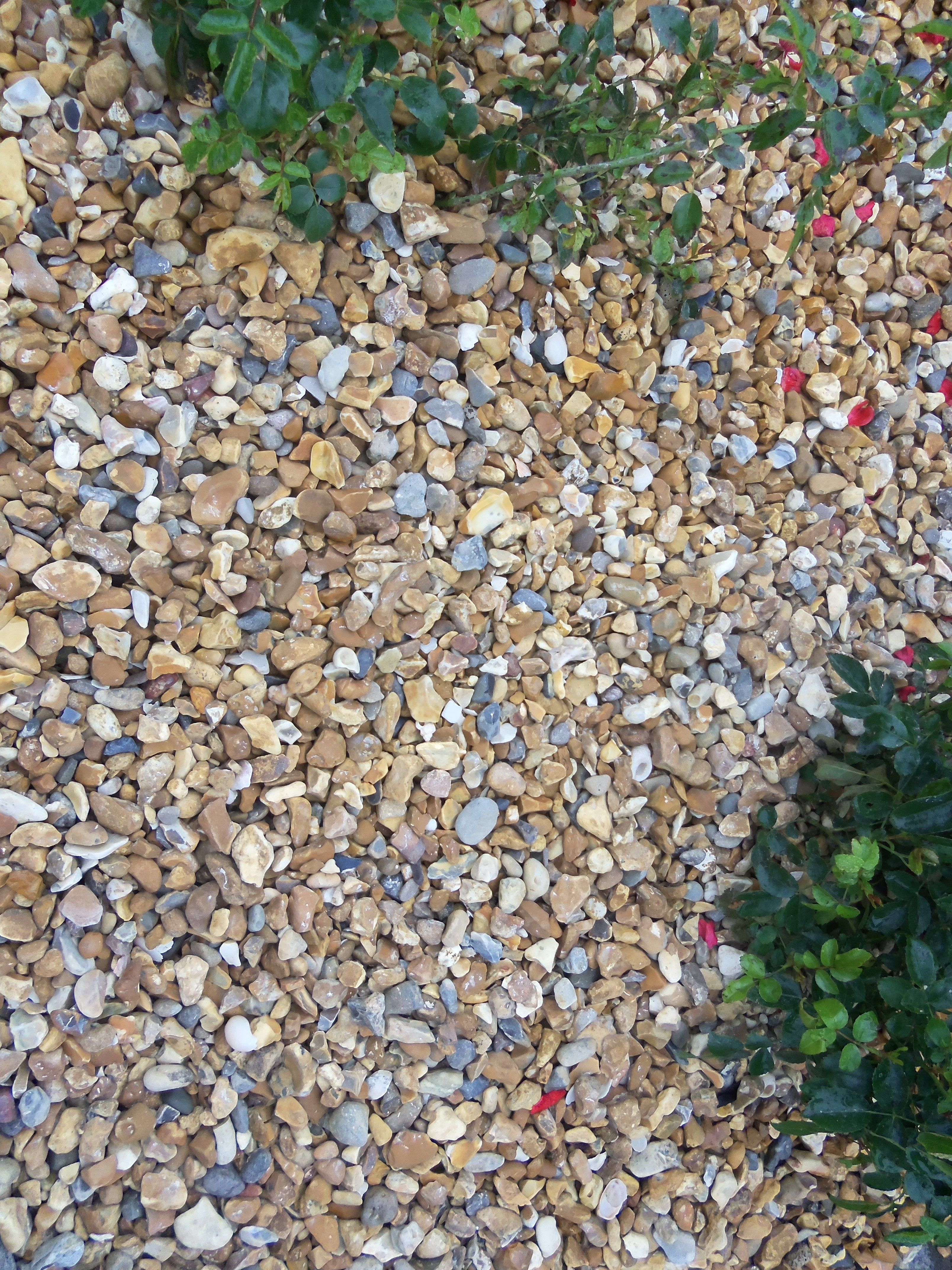 Golden Flint Gravel Available In 10mm Or 20mm Decorative Gravel Backyard Flower Beds