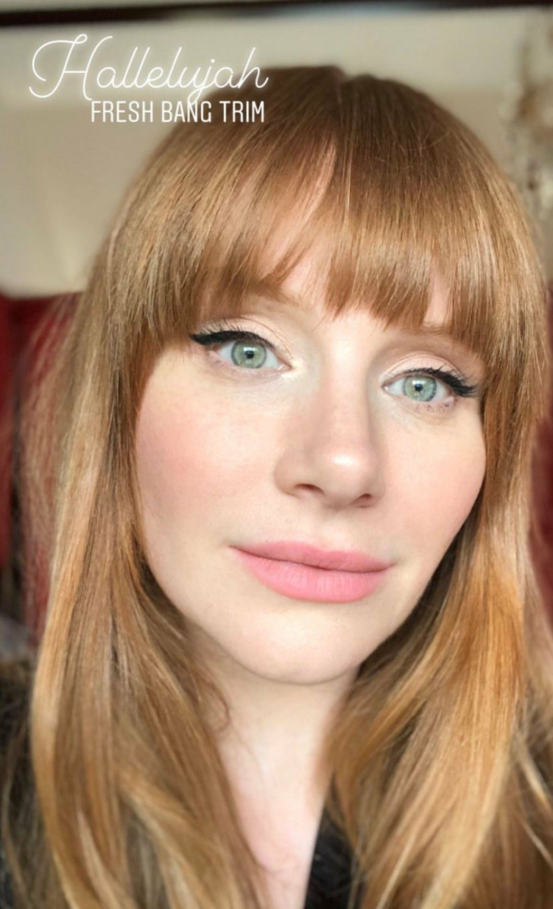 Selfie Bryce Dallas Howard nudes (65 photo), Sexy, Hot, Twitter, see through 2015