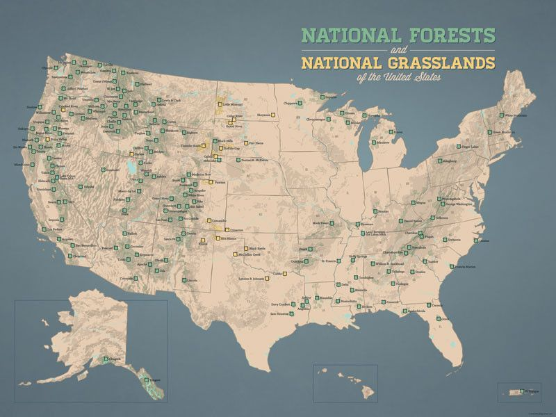 US National Forests Map 18x24 Poster US