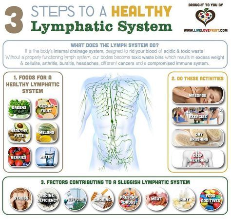The lymphatic system has three functions: 1. Fluid Recovery; 2 ...