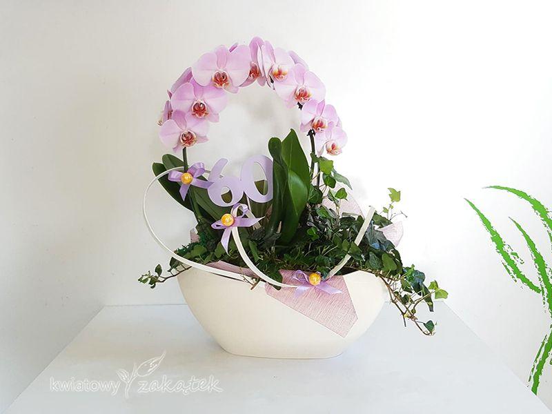 Kompozycja Kwiaty Doniczkowe Planter Pots Planters