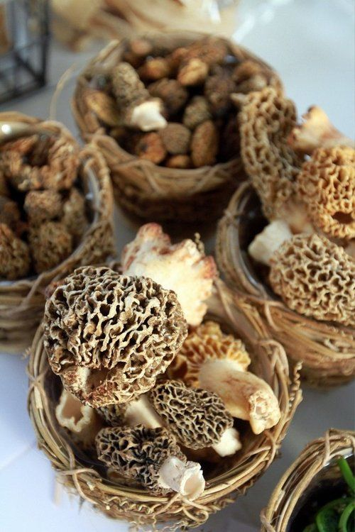 Morel at the Fulton Street Farmers Market by Jon Brouwer via Special to MLive.com