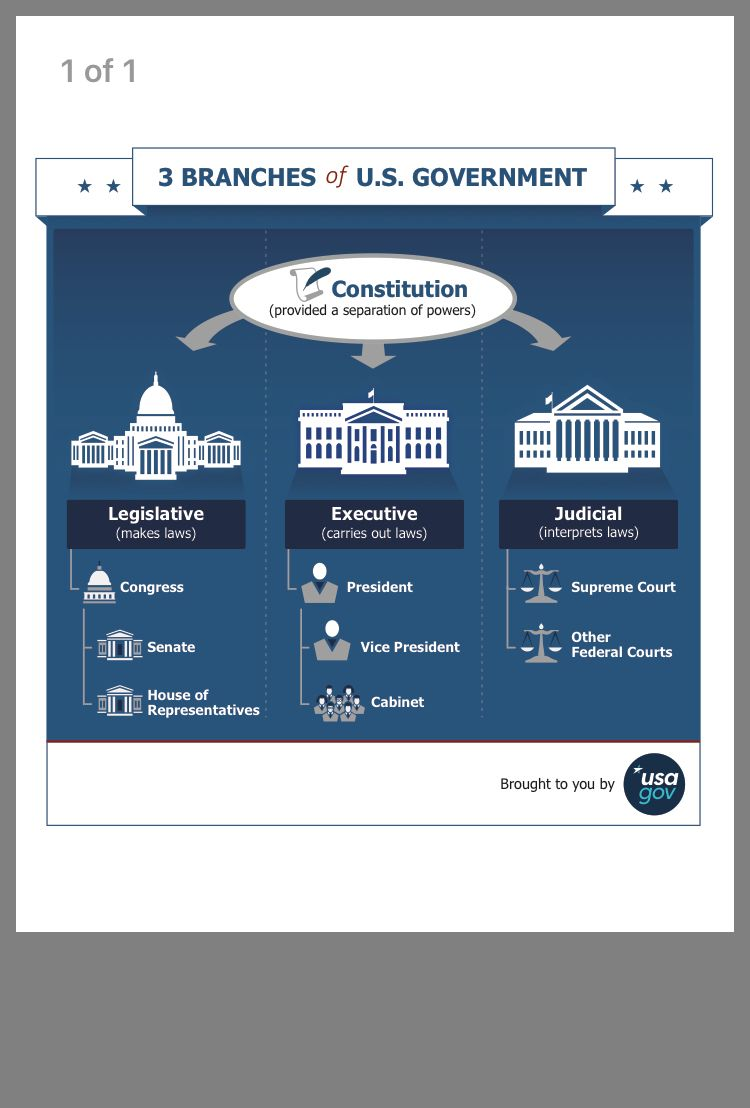 Pin By Shannon Hoover On School Usa Gov Government Branches Of Government