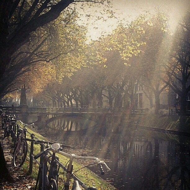 Königsallee in Düsseldorf im Herbstlicht von instagram: ma1970ne