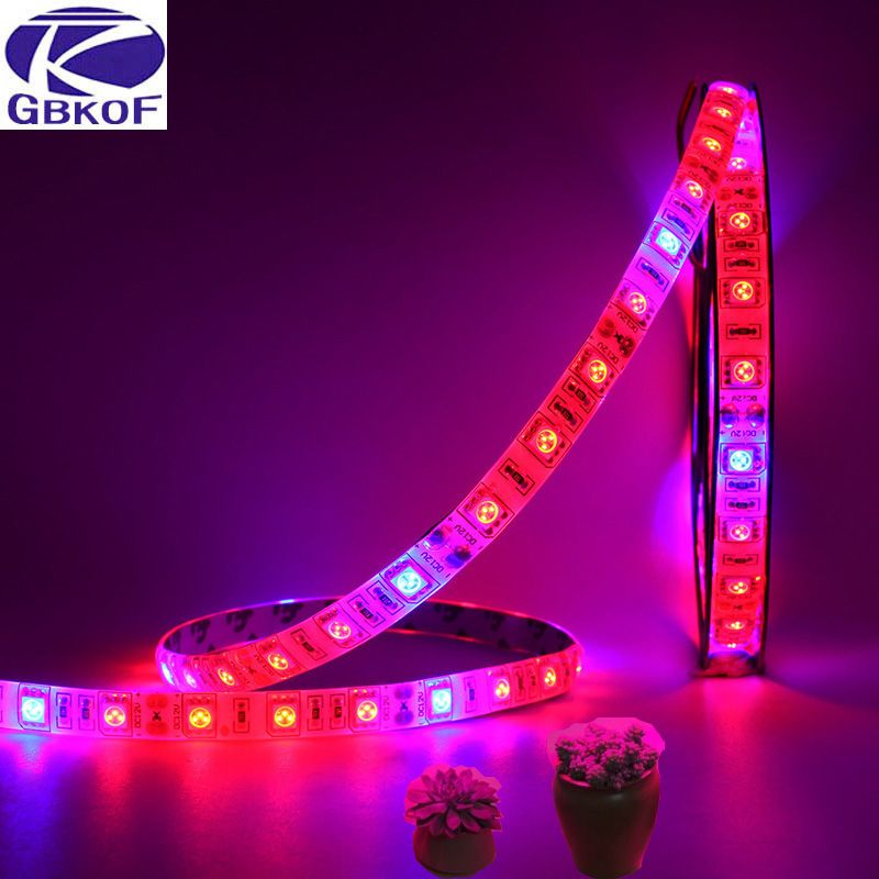 5M LED Phyto Lamps Full Spectrum LED Strip Light 300 LEDs 5050 Chip ...