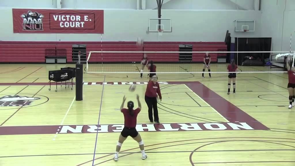 Niu Volleyball Multi Ball Drills Volleyball Training Volleyball Drills Basketball Workouts